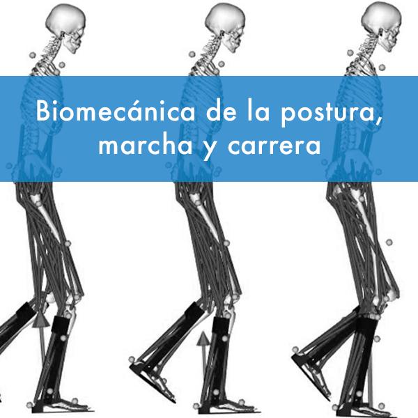 Curso biomecanica de la postura, marcha y carrera fisiodocent
